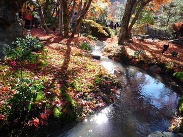 「家庭画報」10月号特集「京都--心に残る美味」の掲載店